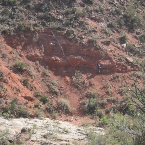 Afloramientos de la Fm. Río Seco de la Quebrada (Triásico Inferior-Medio, Cuenca de San Rafael, sur de Mendoza)