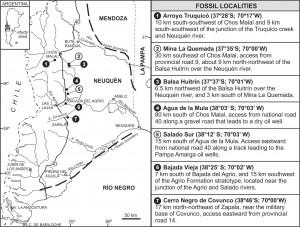 Registros de plesiosaurios de la Formación Agrio.