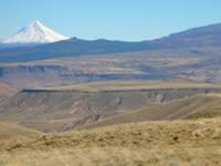 tectonica05