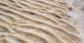 Óndulas de oleaje con crestas arrasadas en depósitos marino marginales, Cretácico de la Cuenca Neuquina