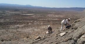 Levantamiento de perfil y muestreo de rocas para estudios petrográficos en facies pelíticas, Formación Agrio.