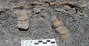 Registro icnológico de una transgresión marina en la Formación El Imperial del Paleozoico superior de Mendoza.