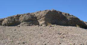 Concentración fósil de ostras. Vista en corte transversal. Formación Agrio, Miembro Pilmatué, Hauteriviano temprano. Localidad: Bajada Vieja, Neuquén.