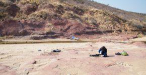 Trabajos de excavación en los depósitos de planicie de la Fm. Omingonde (Triásico Medio, Cuenca del Karoo, Namibia)