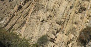 Depósitos de ¨playa lake¨ de la Fm. Cerro de las Cabras de la Cuenca Cuyana (Triásico Medio, Sierra de las Higueras, Mendoza)