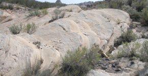 Huellas de tetrápodos en facies de interduna en niveles de la Fm. Yacimiento los Reyunos (Cisuraliano, Cuenca de San Rafael, sur de Mendoza).