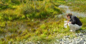 Muestreo de ambientes lacustres en el sur de Santa Cruz, Patagonia austral.