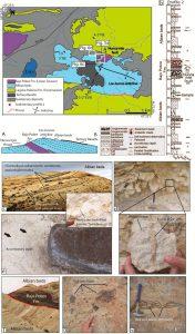 Mapa y sección esquemática del anticlinal Los Juncos y de los estratos albianos.
