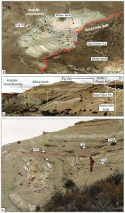 Estratos de crecimiento en depósitos albianos mostrando actividad sintectónica.