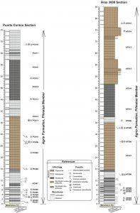 Secciones estratigráficas estudiadas.