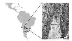 Ubicación de los fósiles estudiados en el Valle Medio del Magdalena, Colombia, al occidente de la Cordillera Oriental.