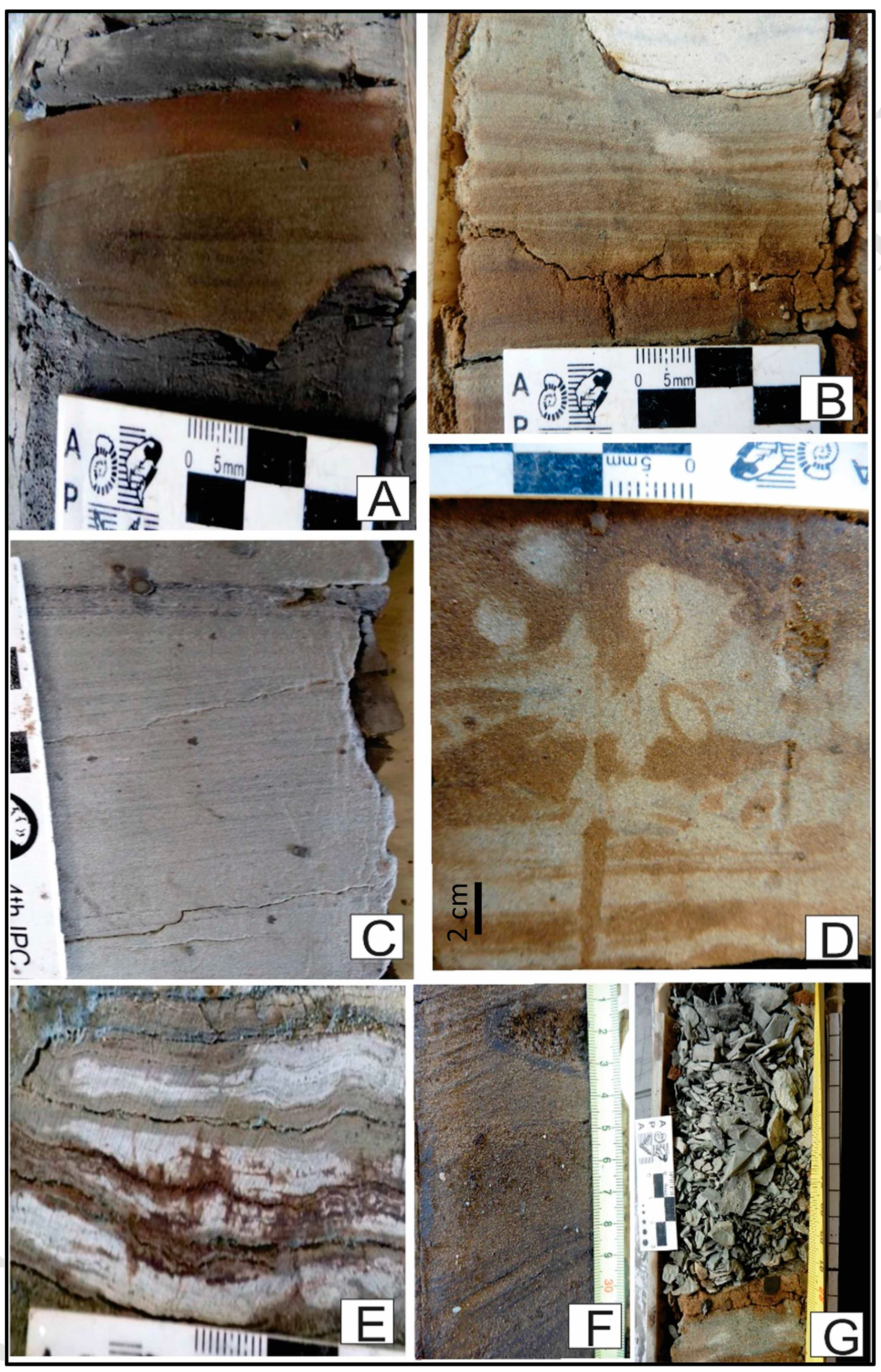 Revisión de una unidad de subsuperficie en el borde nordeste de la cuenca Neuquina: la Formación Centenario del Cretácico Inferior