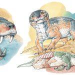 Un nuevo cinodonte de gran tamaño del Pérmico Superior de la Cuenca sudafricana del Karoo y su significancia filogenética