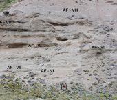Implicancias tectonoestratigráficas del registro sedimentario neógeno del noroeste de la cuenca Austral-Magallanes, Patagonia argentina