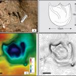El registro más antiguo de huellas de dinosaurios tireóforos en Gondwana, Formación Las Lajas