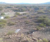 Bitácora de viaje: campaña a un nuevo sitio de huellas fósiles en la Formación Candeleros