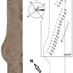 Comportamiento gregario en terópodos no avianos inferido a partir de rastrilladas. Un caso de estudio de la Formación Candeleros (Cretácico, Cenomaniano), Patagonia.