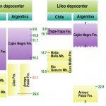 Evolución tectónica de la Alta Cordillera de los Andes (Formación Cura Mallín) entre el Oligoceno tardío y el Mioceno temprano: una revisión