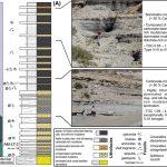 Procesos depositacionales y post-depositacionales en un análogo oil-shale a la escala de la microestructura en el Cretácico Inferior de la Formación Agrio, Cuenca Neuquina, norte de Patagonia.